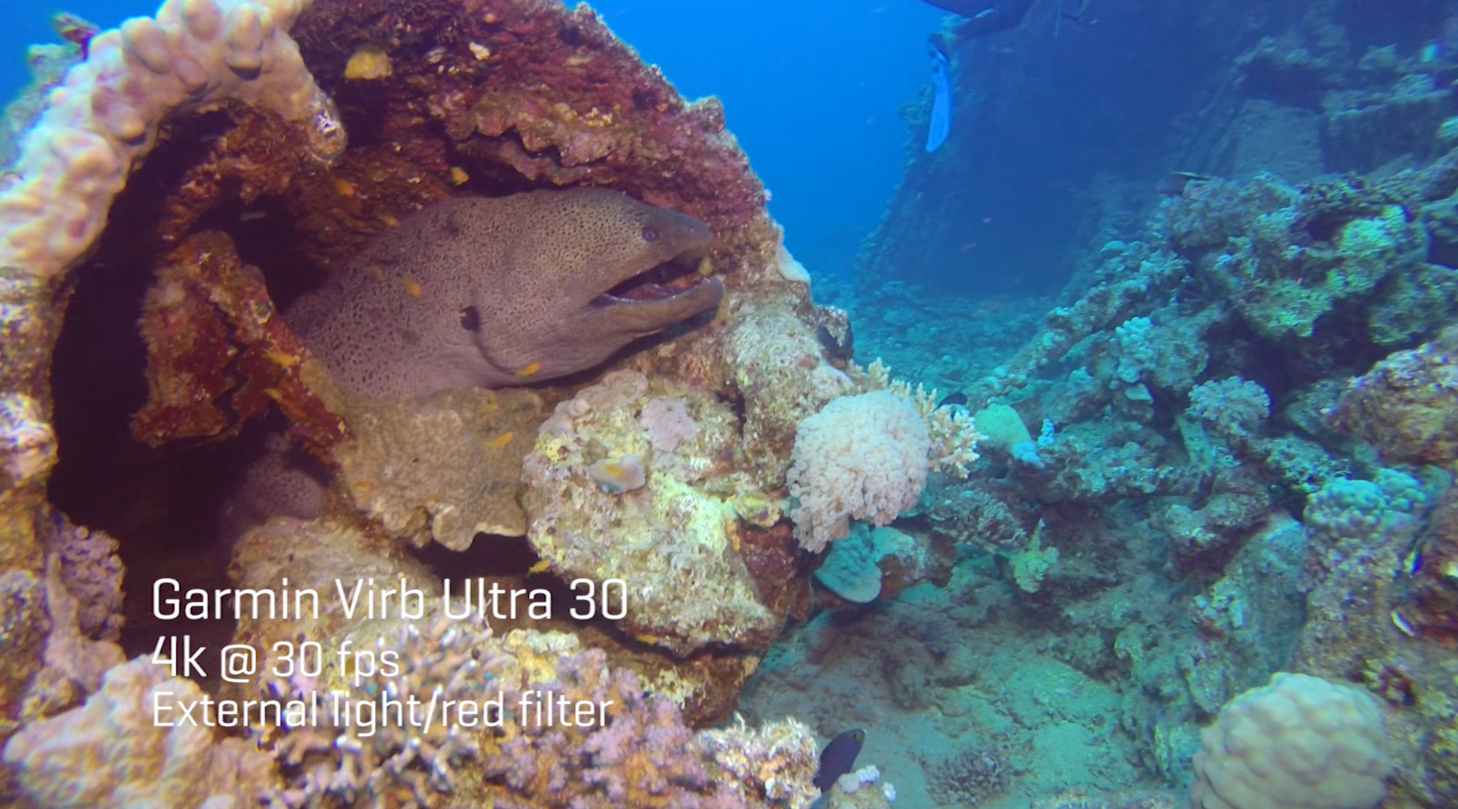 The Best of the Best: A Recap of ScubaLab's Action Camera Test