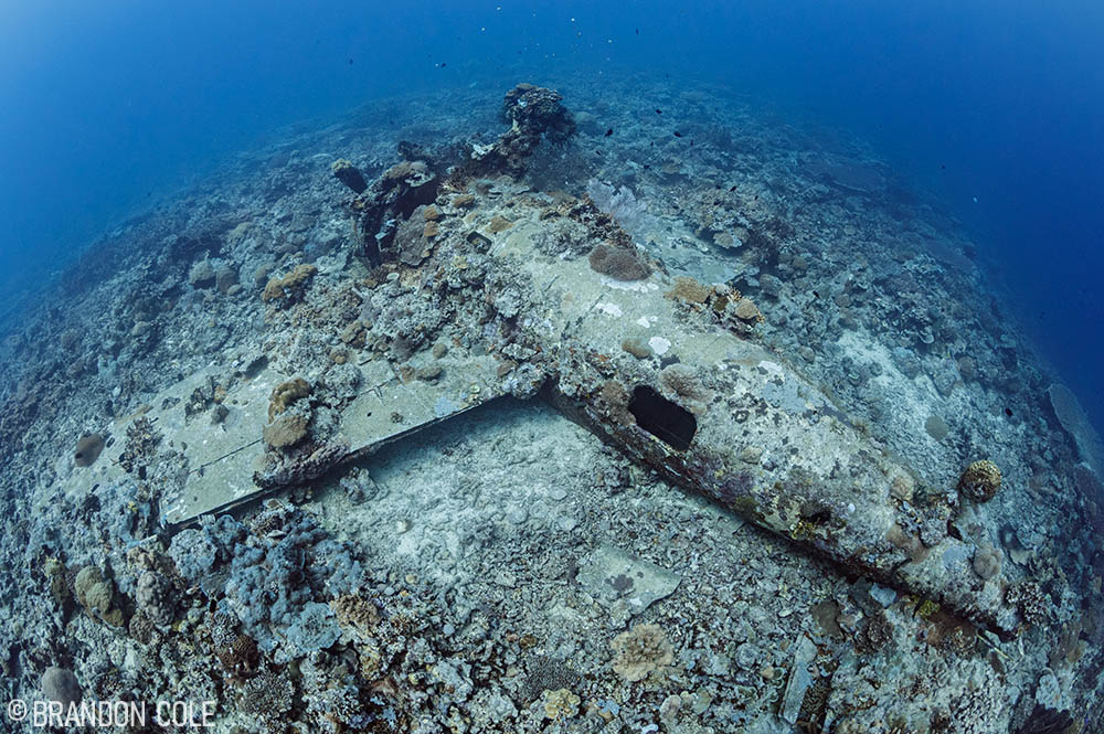 Diving the Solomon Islands: Where the Past is Always Present