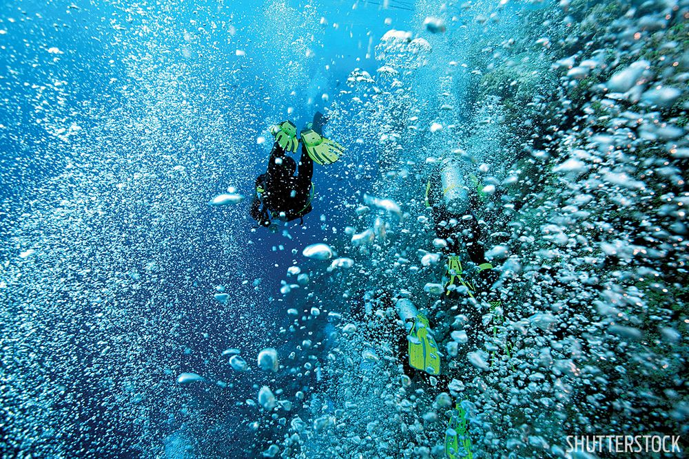 five tips for making a negative entry scuba diving