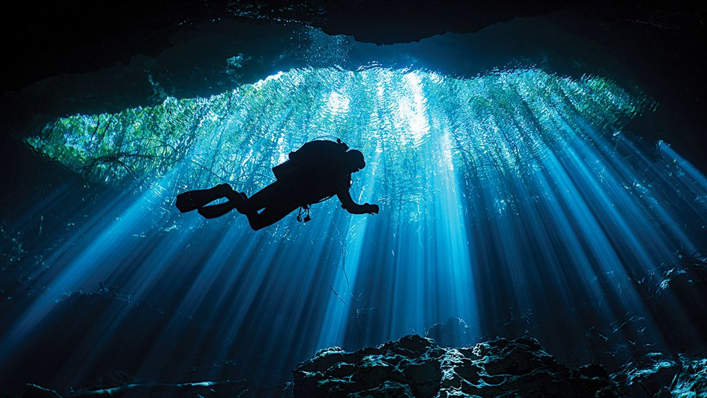 pro tips for shooting silhouette photos underwater scuba diving