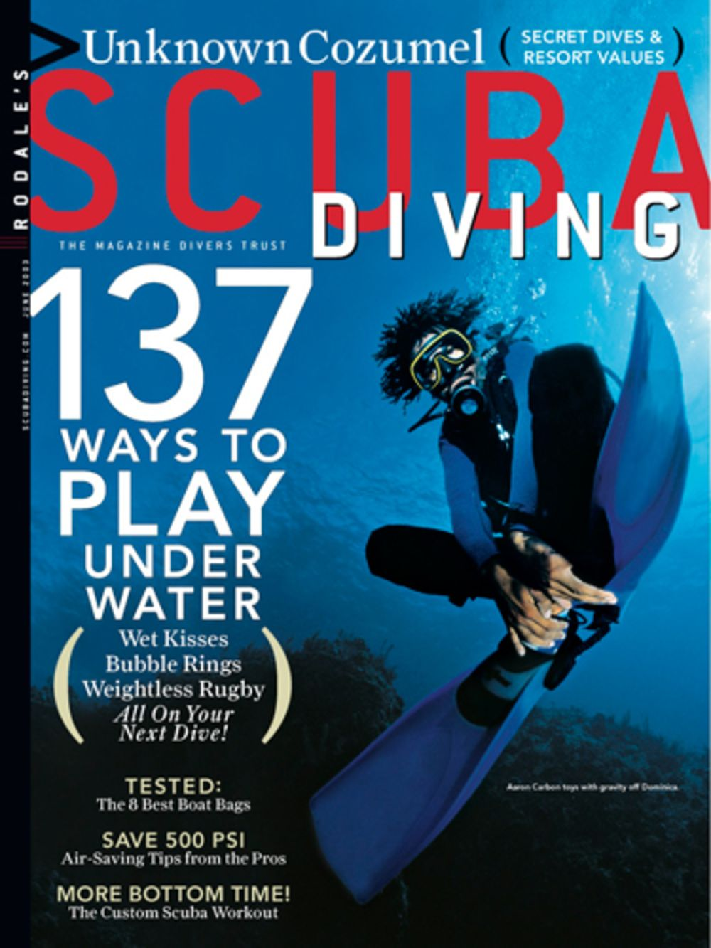 Image result for Scuba Diving magazine.