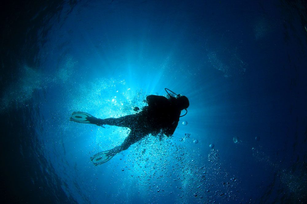 Why Scuba Divers Die and How to Avoid Dive Accidents | Scuba Diving