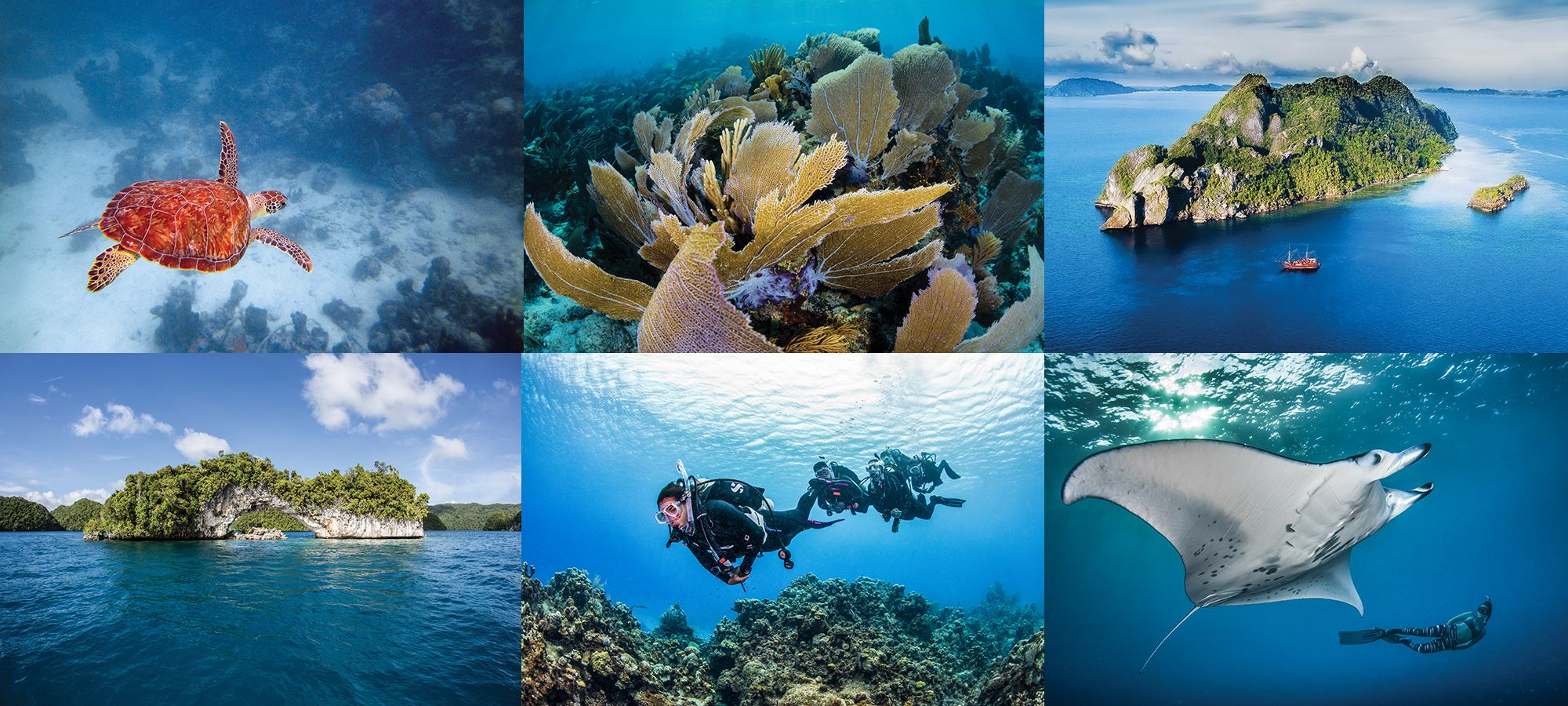 Scuba Diving's 2020 Readers Choice Awards Rank the World's Best Diving