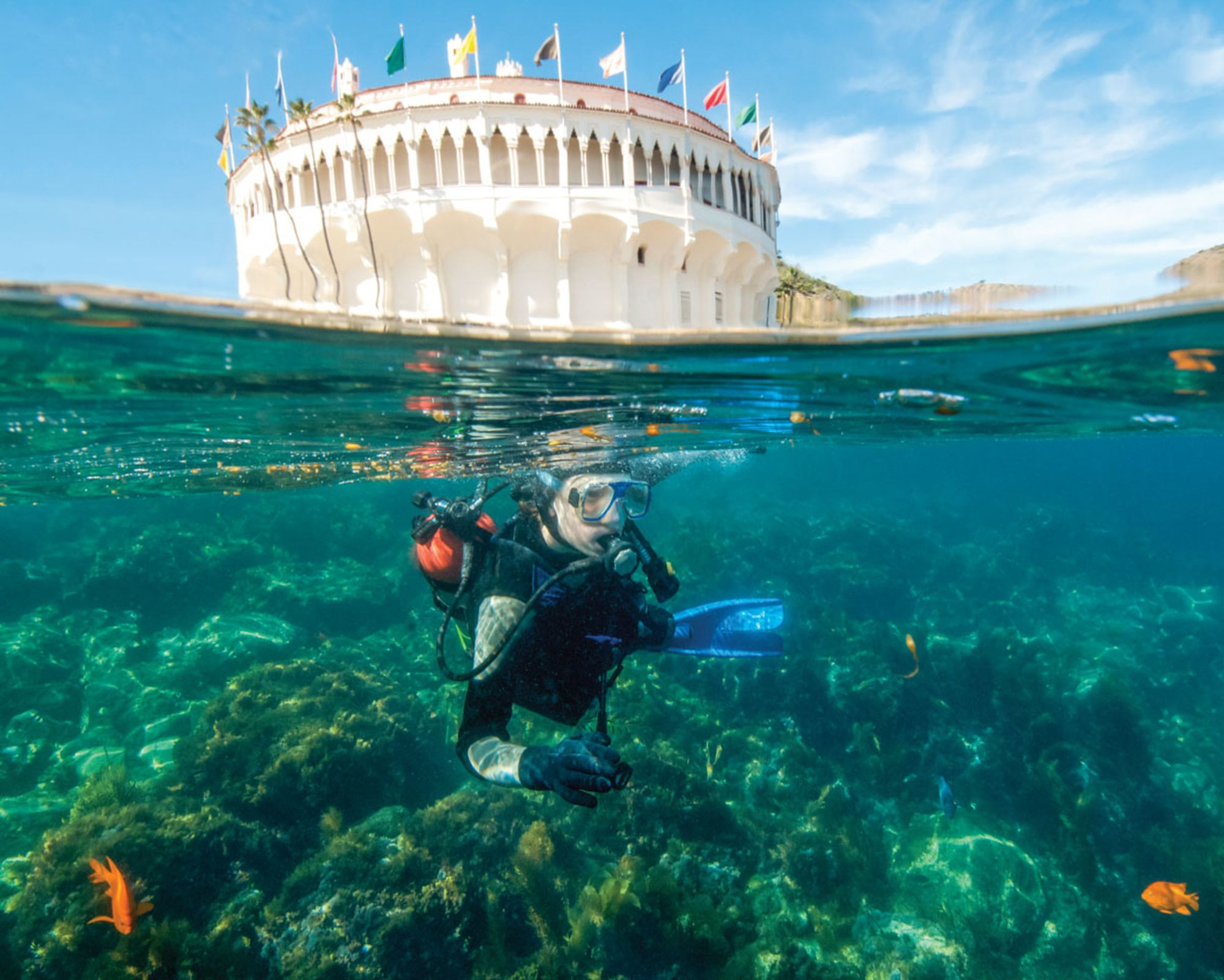 Love at First Site: Editors Recall Their Favorite Dive Sites