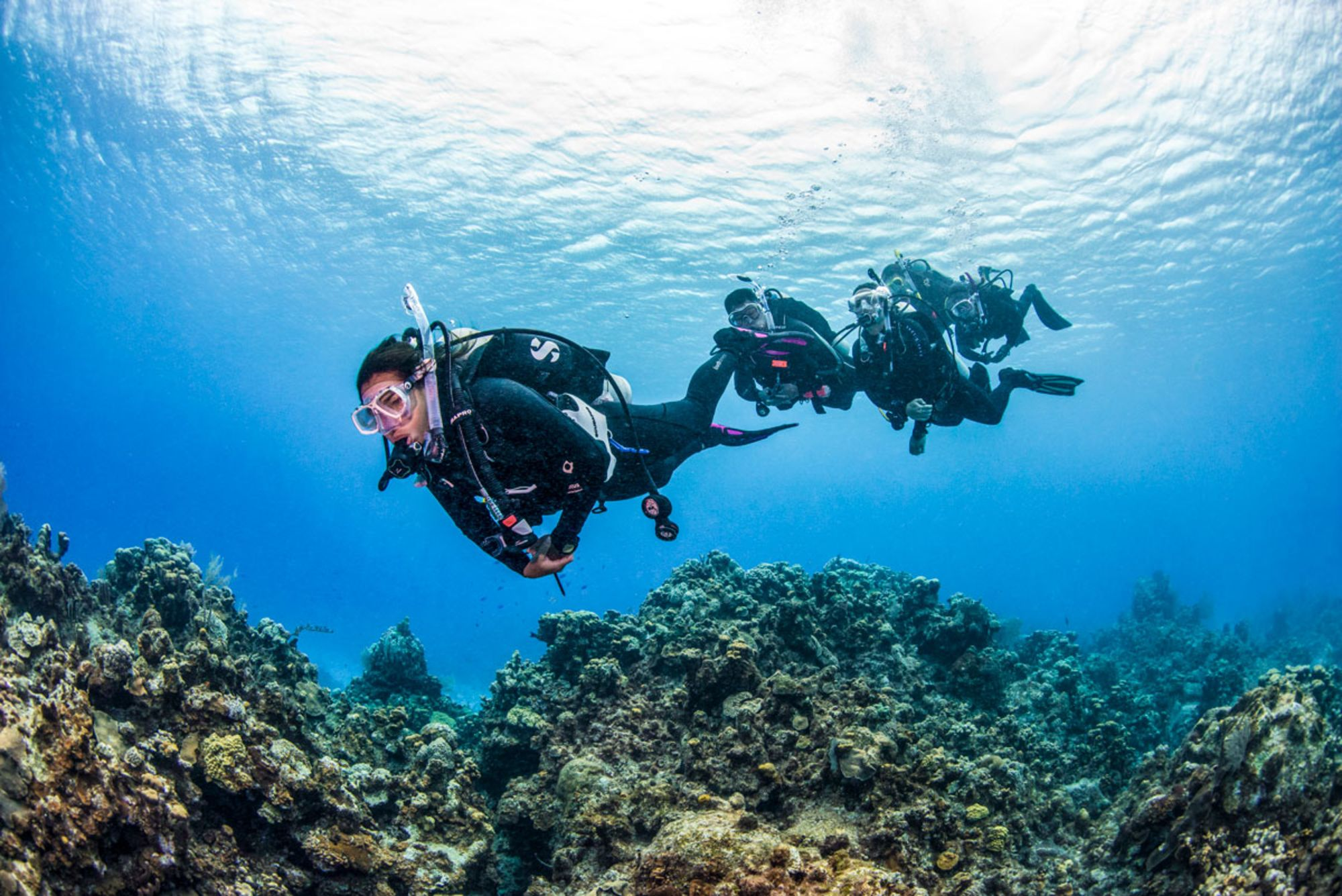 Why You Should Join PADI Club