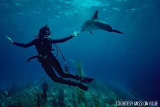 mission blue sylvia earle scuba diver dolphin