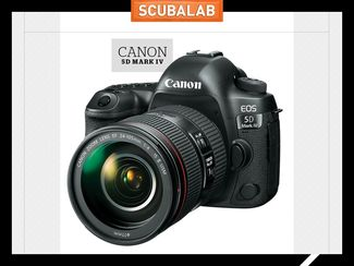 Canon 5D Mark IV camera for underwater photography