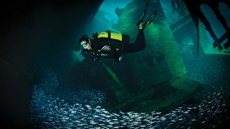 How Research Makes Wreck Diving More Rewarding