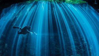 Underwater Photography Tips for Shooting in Caverns