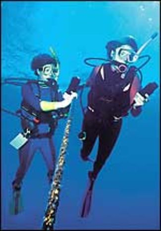 21 Tips for Decompression Diving