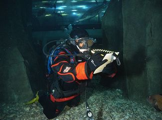 Dive Training: Frozen with Fear in a Drysuit