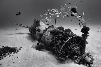 Best Wreck Diving in the United States
