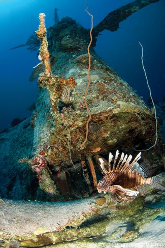 Corsair wreck at Marshall Islands