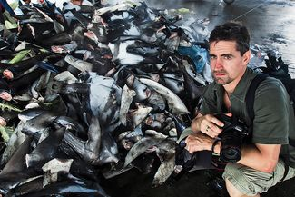 Shawn Heinrichs in front of a pile of shark fins.