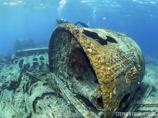 San Jacinto Wreck Dive in the Bahamas Underwater Photo