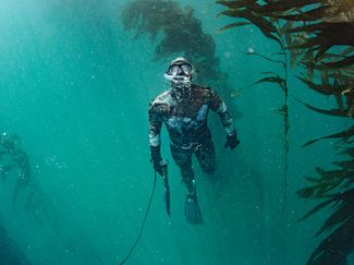 scuba diving and underwater hunting