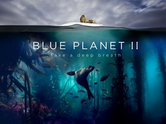 Blue Planet II best clips