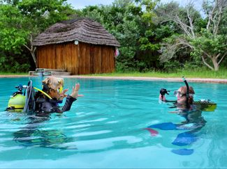 Scuba Divers in Water Training