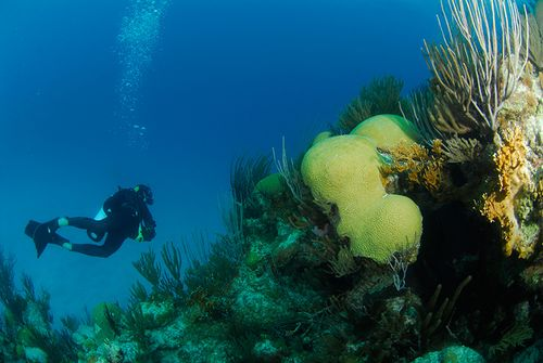 what causes nitrogen narcosis