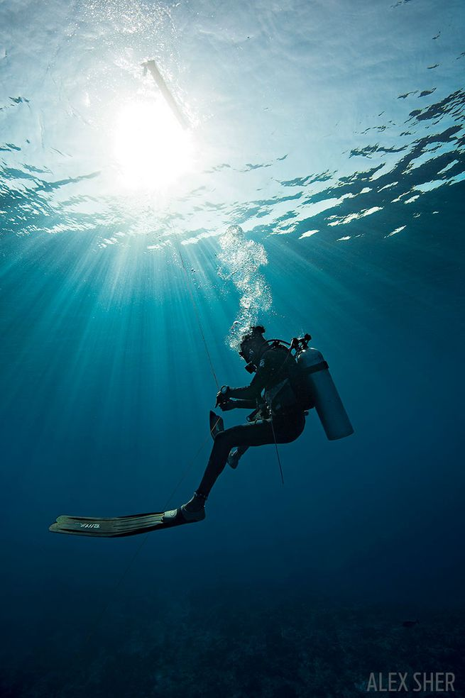How to Rescue Yourself | Scuba Diving