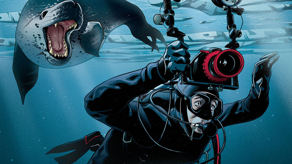 Illustration of leopard seal chasing scuba diver.
