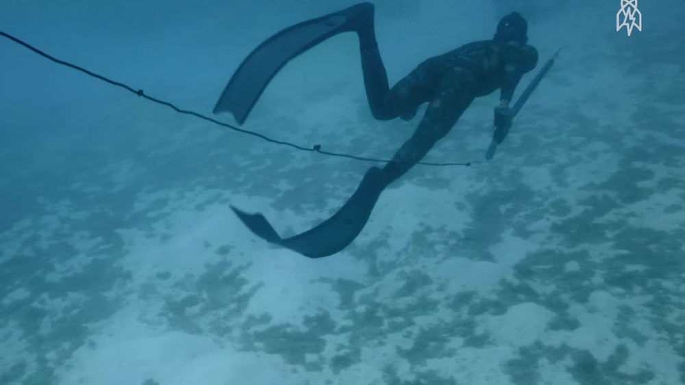 Freediving spear fisherman underwater photo