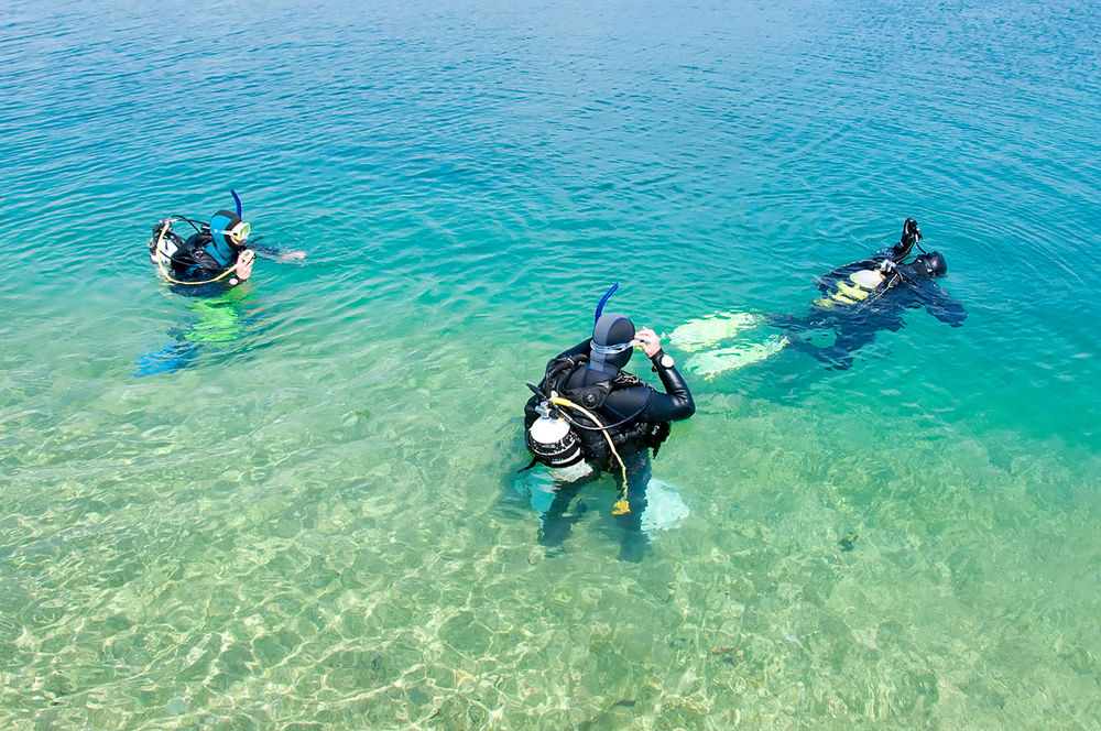 Scuba Divers in the Water