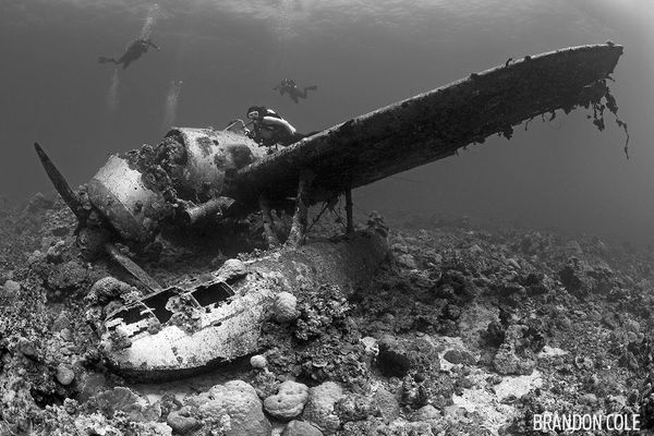 Underwater Photo Jakes Seaplane Wreck Dive Palau