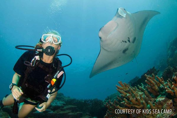 scuba diving kids manta ray encounter underwater photo