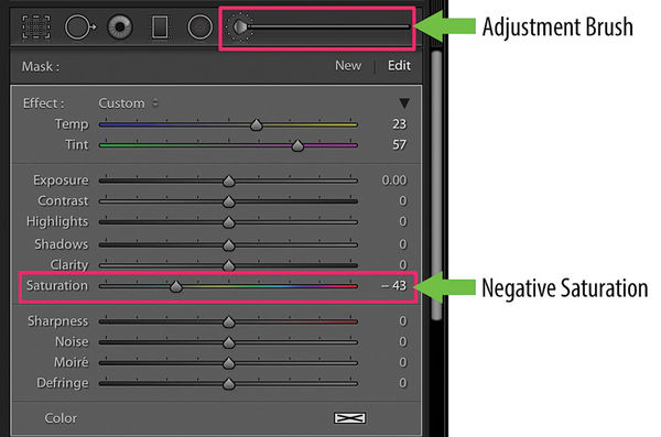 Using the Adjustment Brush and Negative Saturation Panel in Lightroom