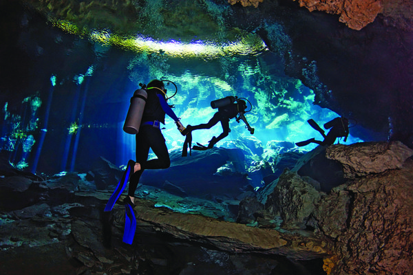 scuba diving experience essay Free essays on scuba diving experience get help with your writing 1 through 30.
