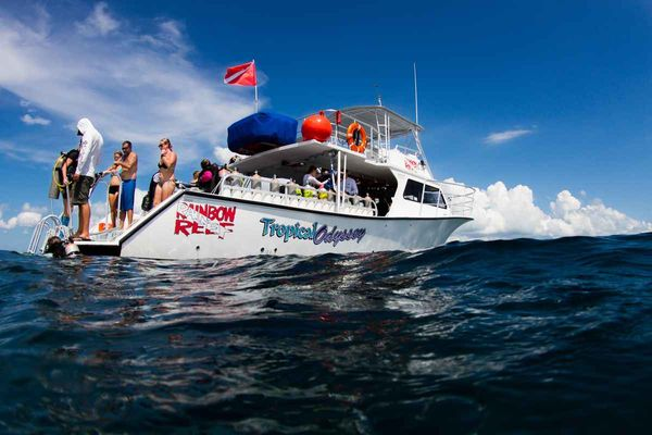 Tropical Odyssey Dive Boat