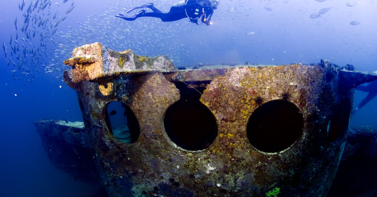 Tips To Get Better Wide-Angle Underwater Photos