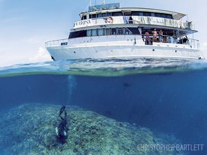 scuba diving Papua New Guinea by liveaboard