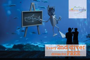 Every 2nd diver dives free on Bonaire